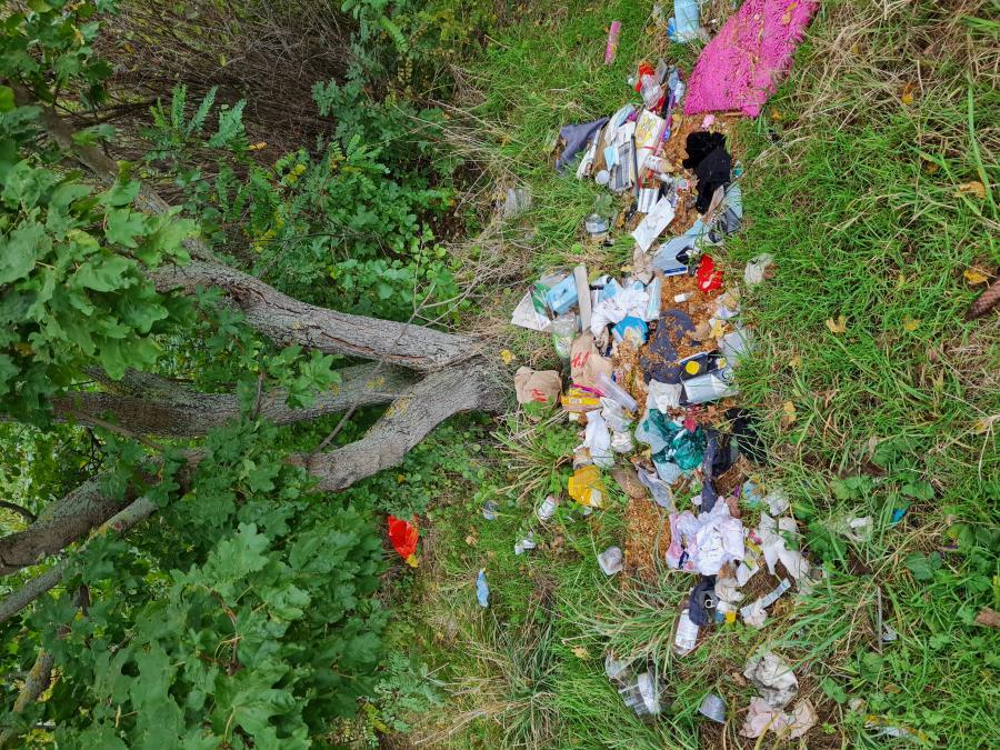 Müllsammeln am Herrenberg